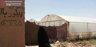 شناسایی محله های یزد