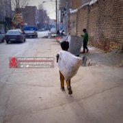 هفت باور غلط درباره زباله گردی کودکان